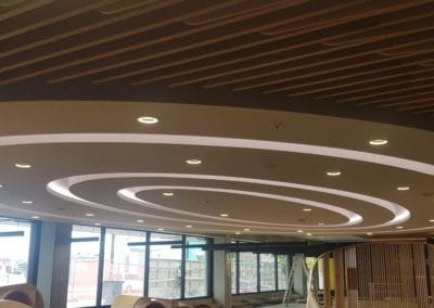 Fibrous Plaster Elliptical Ceiling with Lighting Troughs